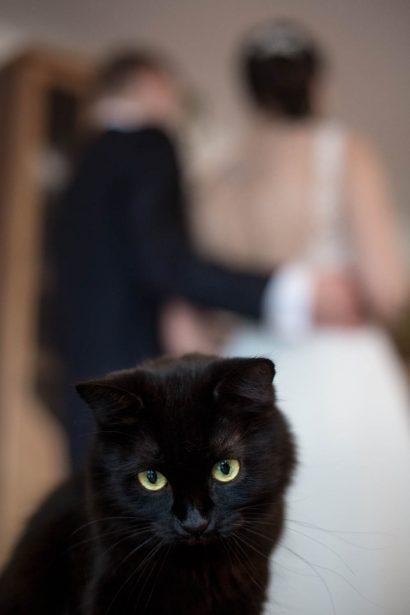 Hochzeitsfotos mit Haustier Augsburg