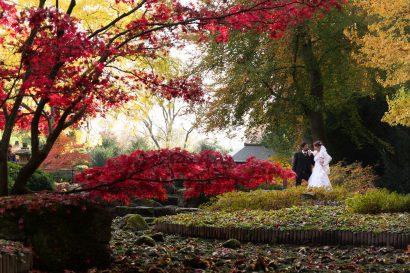 Hochzeitsvideo shooting im botanischen Garten Augsburg by Zammgfasst Film und Fotografie